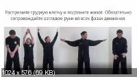 Гимнастика Для Суставов: Система Яншенгун (2017) Видеокурс