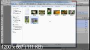 Пакетная обработка фотографий с помощью экшена (2017) HDRip