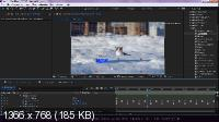 Быстрая анимация в After Effects (2017) Видеокурс