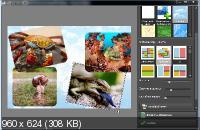 NCH PhotoPad Image Editor Pro 4.18 Rus Portable