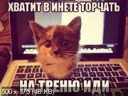 http://i96.fastpic.ru/thumb/2017/0906/fb/8ff69ff26e73a2ac2165231ee5138cfb.jpeg