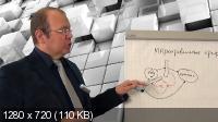 Проект-Менеджмент: Как руководить проектами любой сложности (2017) Видеокурс