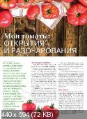 Сад своими руками №11  (ноябрь /  2017)