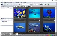 Photo Mechanic 5.0 Build 18980 Portable (ML/Rus)